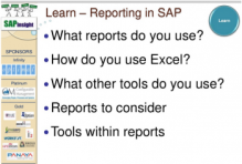 SAPinsight SAP Super User Huddle Reporting